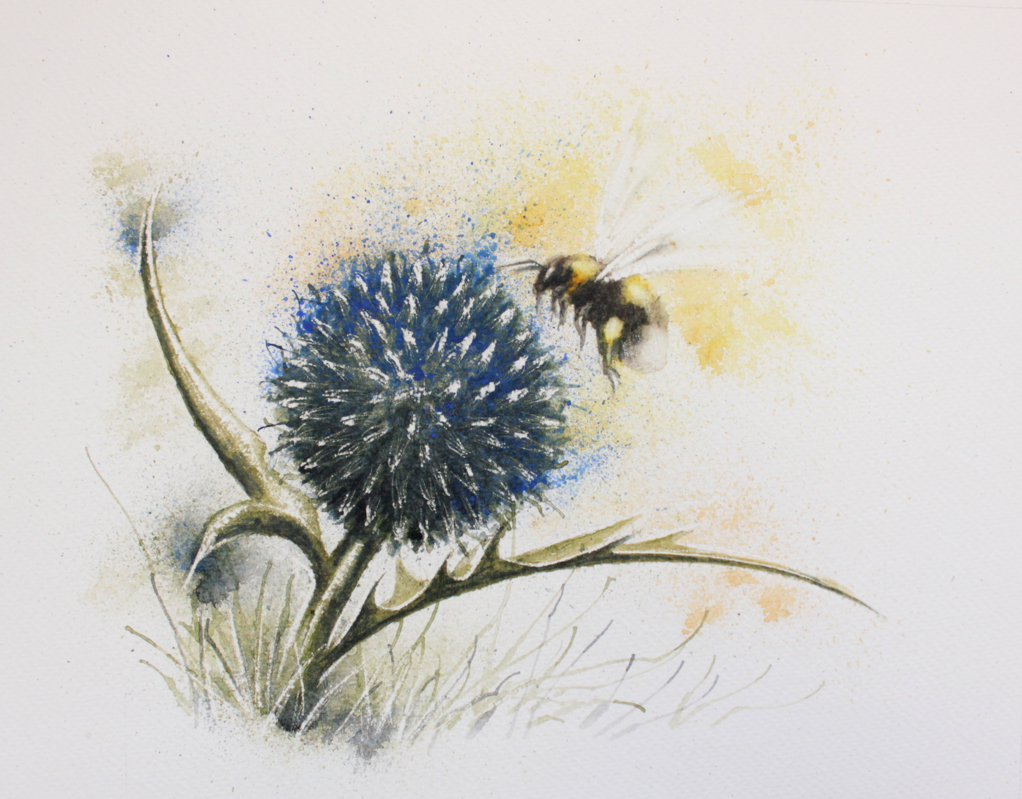 Bee and Globe thistle